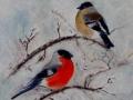 """Bullfinches"" by Aileen Wheeler"