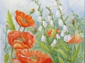 """Anne Whigham - """"Poppies and Foxgloves"""""""