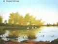 """Airthrey Loch, Stirling"" by Margaret MacGregor"