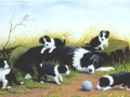 """""""Gael with her pups"""" by Margaret MacGregor"""