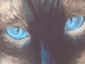 """Ol Blue Eyes"" by Val Kenyon"