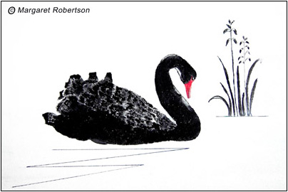 """Black swan"" by Margaret Robertson"