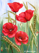 """""""Poppies"""" by Galyna Lee"""