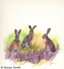 """The Three Hares"" by Susan Smith"