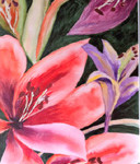 """Lilies"" by Louise Finlayson"